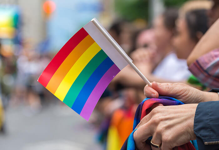 Person holding a small gay pride flag at a parade