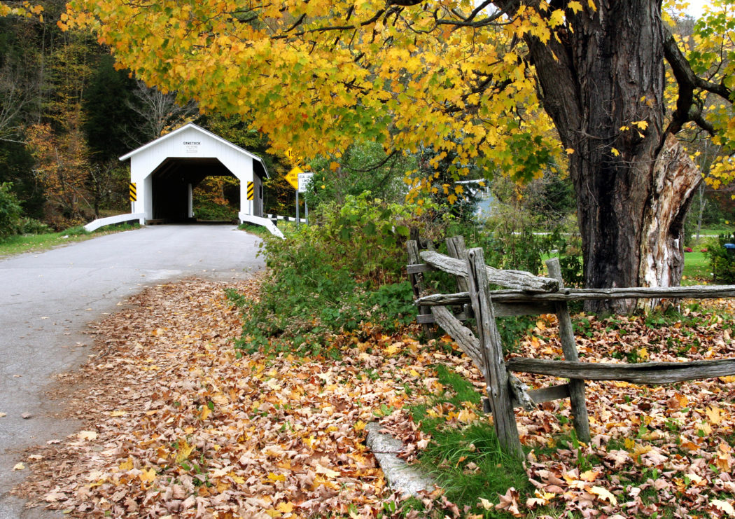 Covered Bridge in Vermont around Trees with Gold Leaves