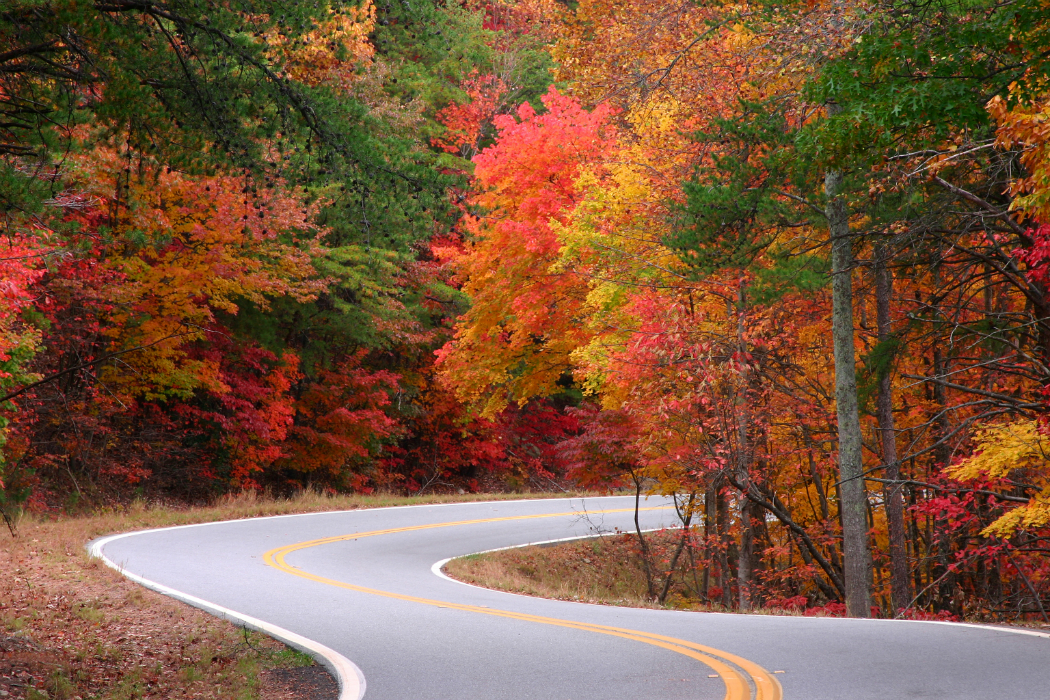 Scenic Drive through Fall Foliage of Vermont