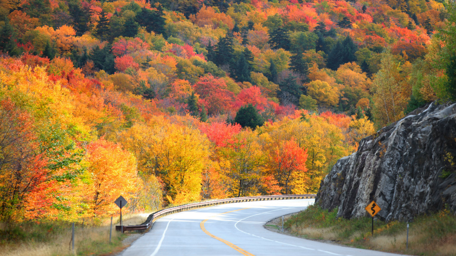 Scenic Drive through Fall Foliage in Hills